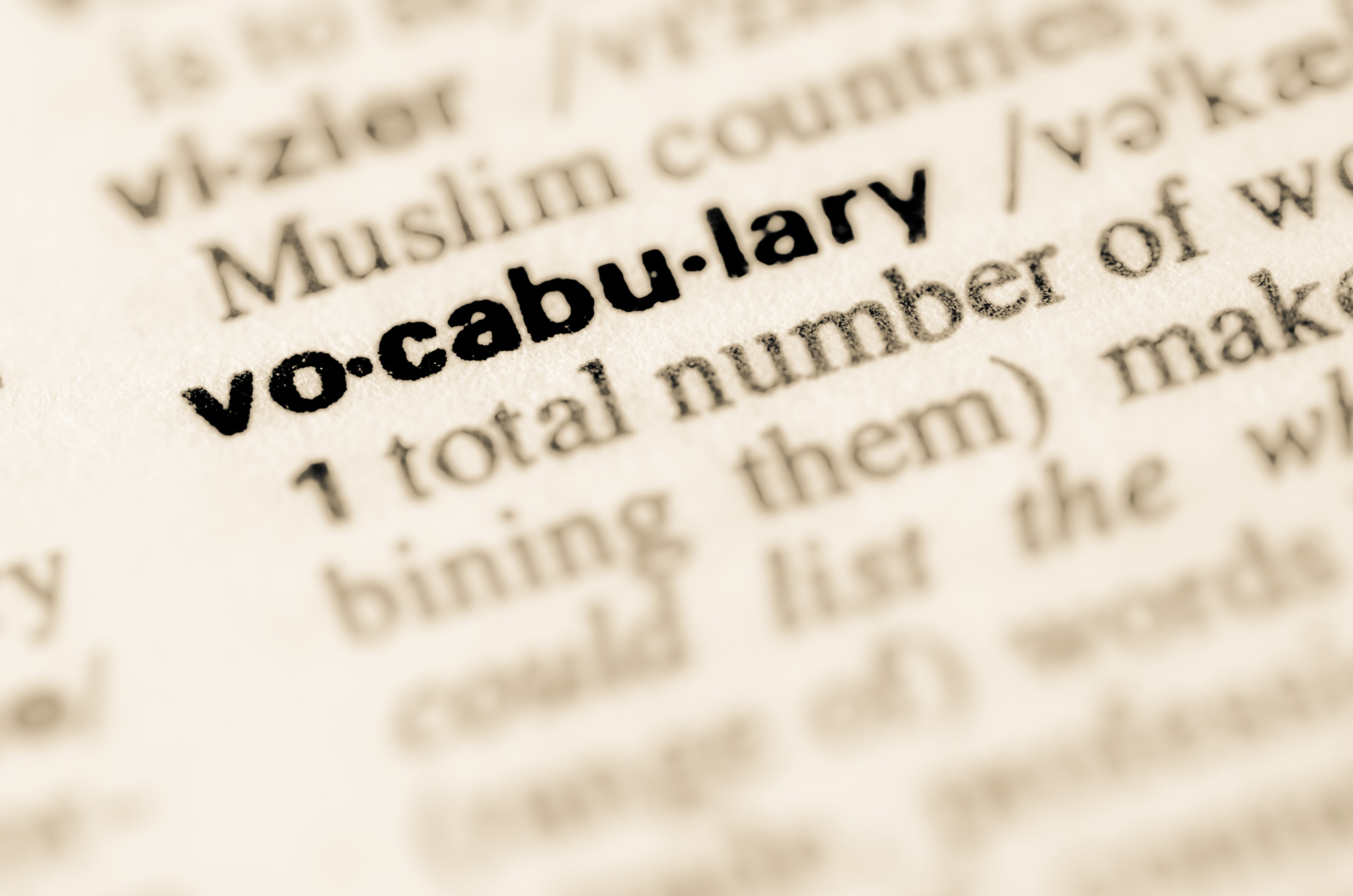 Vocabulary in the dictionary